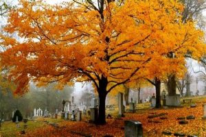 graveyard headstones and autumn foilage
