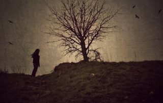 Woman looks to the horizon - dead tree in background