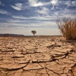 The Coming Spiritual Famine