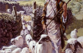 I will care for my sheep like a shepherd