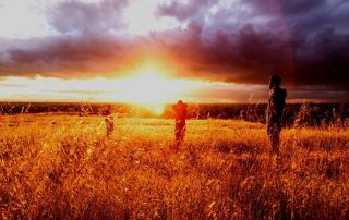 Men in field at sunset