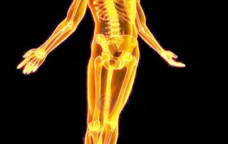 Vista del esqueleto xray humano