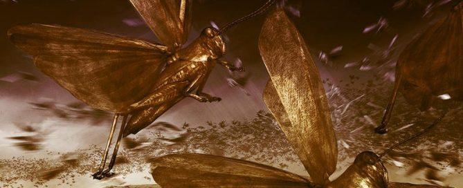 voracious locust of Joel darken the sky